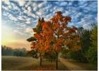 Depressione stagionale: perché in autunno siamo tutti più tristi?
